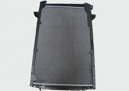 top quality caanass 1627416 DAF CF75 Radiator assembly-1