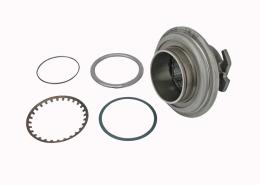500087020 bearing Renault1
