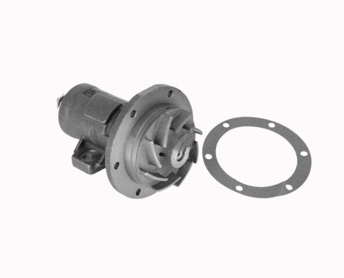 5010248921 water pump renault-1